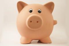 Piggy Schwein Stockbild