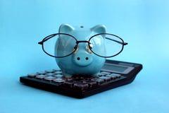Piggy piggy Schwein mit Gläsern auf einem Taschenrechner lizenzfreie stockfotos