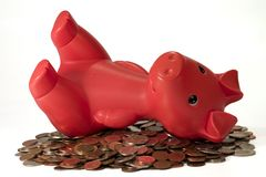Piggy on vacation. Piggy resting on pile of coin Stock Photography