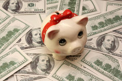 Piggy-wiggy and many hundred dollars. On the desk stock photography