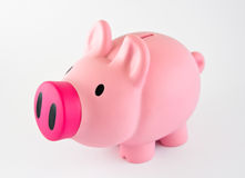 Piggybank. With pink nose, isolated over white Royalty Free Stock Photography