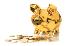 Free Piggybank. Stock Image - 24086371