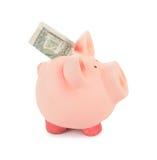 Piggybank Στοκ Εικόνα