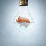 Piggybank in bulb. Glass light bulb with piggybank floating in water Stock Image