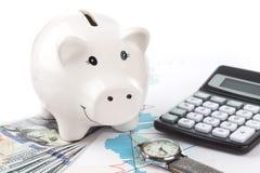 Piggybank and calculator Stock Photography
