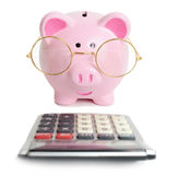Piggybank and calculator Stock Image