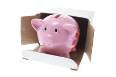 Piggybank in Cardboard Box Royalty Free Stock Photography