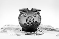 Piggybank on cash Royalty Free Stock Photography