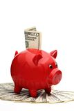 Piggybank (clipping path included). Piggybank with dollarbills, isolated on a white background (clipping path included stock images