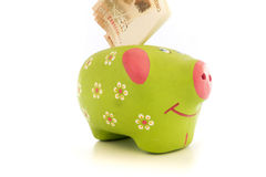 Piggybank cofrinho Stock Photos