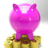 Piggybank On Coins Shows European Currency Royalty Free Stock Photography