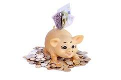 Piggybank com notas Foto de Stock Royalty Free
