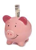 Piggybank con dólar dinero Foto de archivo