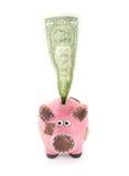 Piggybank con el dólar Imagen de archivo libre de regalías
