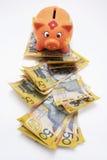 Piggybank con le note del dollaro Immagini Stock