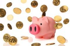 Piggybank con muchos bitcoins Imagen de archivo libre de regalías