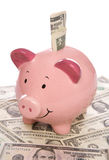 Piggybank con soldi del dollaro US Fotografia Stock Libera da Diritti