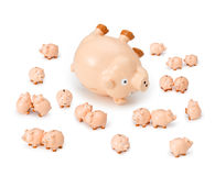 Piggybank Credit Debt Risk. The global financial crisis with a sick piggybank Stock Photo