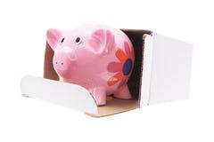Piggybank in de Doos van het Karton Royalty-vrije Stock Afbeeldingen
