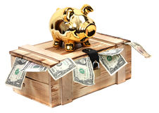 Piggybank de oro en caso de madera con las notas del dólar Foto de archivo libre de regalías