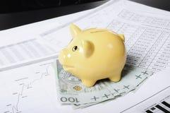 Piggybank die op het geld wordt geplaatst Stock Fotografie