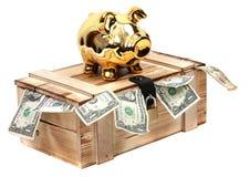Piggybank dorato sul caso di legno con le note del dollaro Fotografia Stock Libera da Diritti
