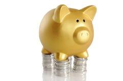 Piggybank dourado com moedas Fotos de Stock Royalty Free