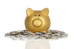 Piggybank dourado com moedas Foto de Stock