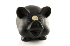 Piggybank with Euro Coin Royalty Free Stock Image