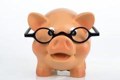 Piggybank with eyeglasses Stock Image
