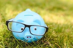Piggybank with eyewear on green spring grass Stock Photos