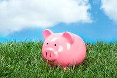 Piggybank in field Stock Photography