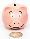 Piggybank found a Silver Dollar. Piggybank happy about its new find silver dollar. Big dollar little back. Images shows the importance of saving. The old style royalty free stock image