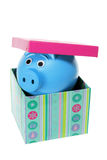 Piggybank in Gift Box Stock Photos