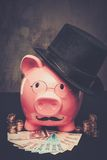 Piggybank in glasses and hat Stock Images