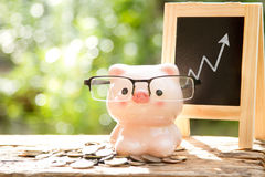 Piggybank growth business Royalty Free Stock Image