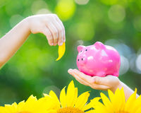 Piggybank and leaf in hands Royalty Free Stock Photos