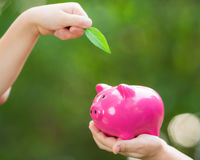 Piggybank and leaf in hands. Against green spring background royalty free stock photos