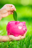 Piggybank and leaf in hands Stock Photo
