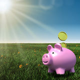 Piggybank on a meadow with blue sky background Royalty Free Stock Photography