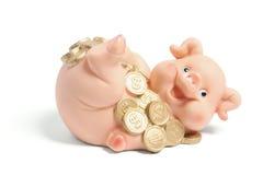 Piggybank met Muntstukken Stock Afbeelding