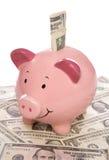 Piggybank mit Dollargeld Lizenzfreies Stockfoto