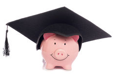 Piggybank with mortar board hat royalty free stock images