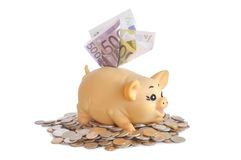 Piggybank with notes Royalty Free Stock Photo