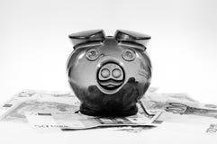Piggybank op contant geld Royalty-vrije Stock Fotografie