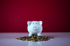 Piggybank over some coins Stock Image