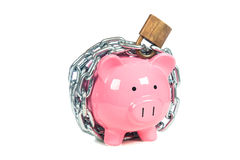 Piggybank rose Photos stock