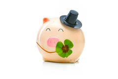 Piggybank with shamrock. Four-leafed clover and piggybank isolated on white Royalty Free Stock Images