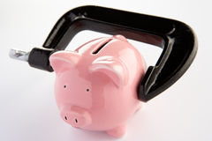 Piggybank in a vice. Piggybank in a black vice stock images