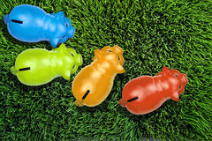 Piggybanks on grass. Stock Image